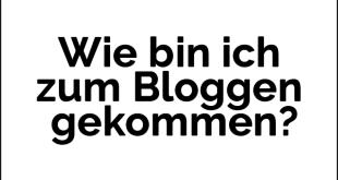 wie bin ich zum bloggen gekommen