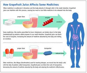 Grapefruit Wirkung-Vorteile-Dosis-Studien