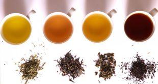 Was macht Tee gesund