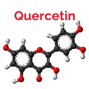 Quercetin Wirkungen Vorteile-Studien