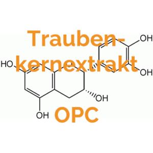 Traubenkernextrakt OPC Wirkungen-Vorteile-Antioxidants