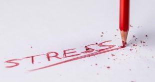 Stress Cortisol negative Folgen Krankheit Auswirkungen
