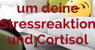 Stressreaktion hemmen und Cortisol-Spiegel verringern