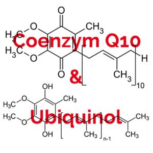 Coenzym Q10 Ubiquinol Vorteile-Dosis-Nebenwirkungen