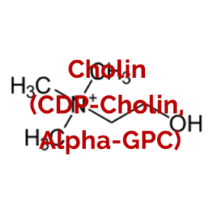 Cholin (CDP-Cholin, Alpha-GPC) Vorteile-Nebenwirkung-Dosis-Risiken-Erfahrungen