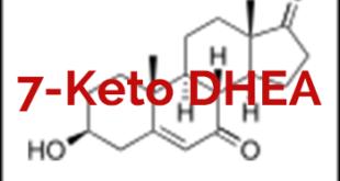 7-Keto-DHEA-Vorteile-Nebenwirkungen-Dosis-Hormon