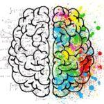 Phosphatidylserin-Vorteile-Wirkungen-Gefahren-Nebenwirkungen-Dosierung-Alzheimer-Gehirn