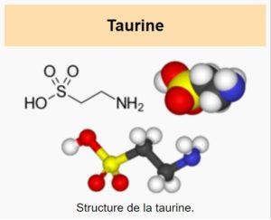 Taurin-Vorteile-Dosis-Nebenwirkungen-Mangel-Gefahren