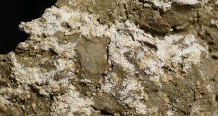 Bentonit-Montmorillonit-Vorteile-Nebenwirkungen-Gefahren-Anwendung-Haut-Häufigkeit